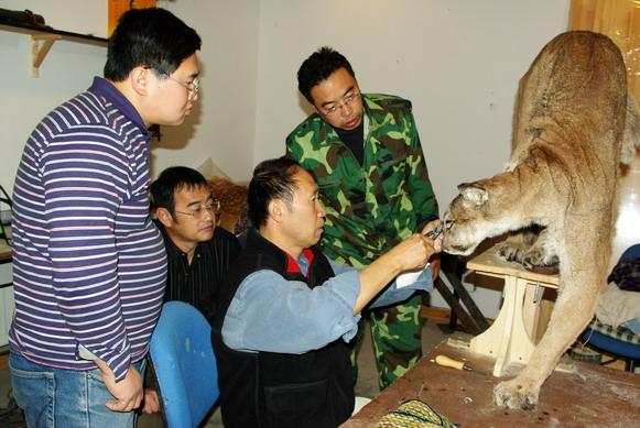 北京野生动物标本艺术中心